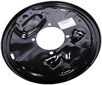 Amazon.com: GM Genuine Parts 15650129 Rear Brake Backing Welding Plate:  Automotive
