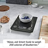 Smart Nutrition Scale | Works with Alexa | A Day 1