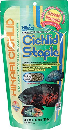 (Hikari Cichlid Staple Floating Baby Pellets for Pets, 8.8-Ounce)