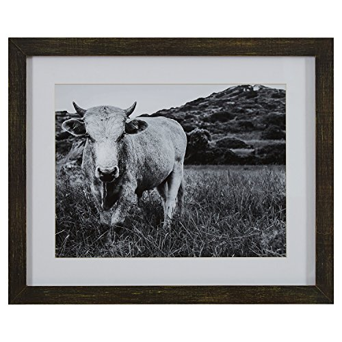 Black And White Stone (Modern Black and White Photo of Bull in Charcoal Frame, 22