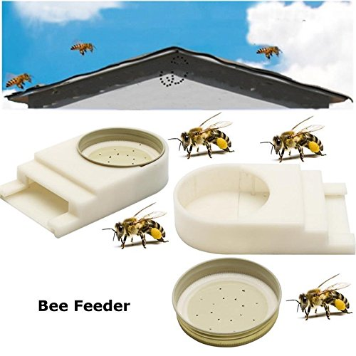 Katoot@ Bee Feeder Beehive Entrance For Spring Build Up or Summer Plastic Keeping Hive Beekeeper Tool American Nest Door Type (Beehive Spring)