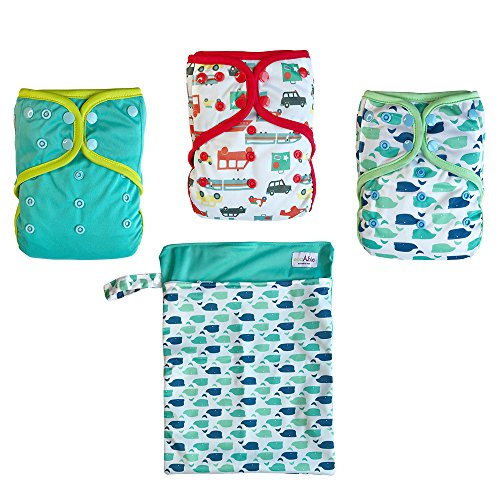 EcoAble Baby Day & Night All-In-One AIO Cloth Diapers, Size 10-35Lb, 3-Pack Bundle (Boy)