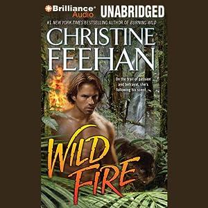 Wild Fire Hörbuch