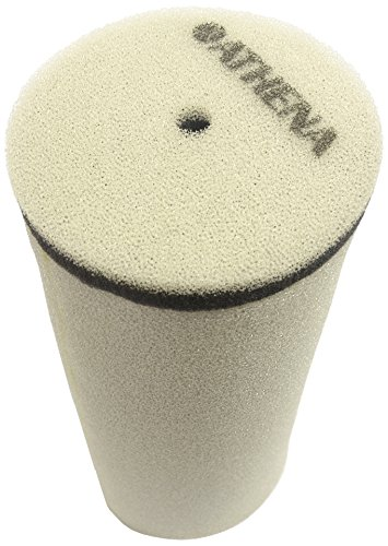 S410485200031 Athena Air Filter