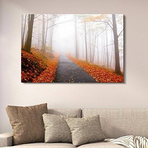 Quiet Lane in The Woods with Fallen Leaves in Autumn