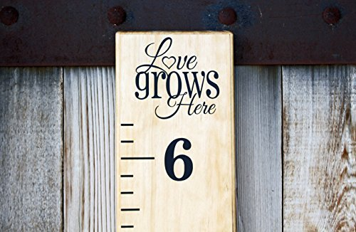 DIY Vinyl Growth Chart Ruler Decal Kit, Love Grows Here