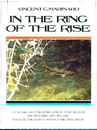 In the ring of the rise (Rings Rise)