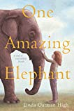 img - for One Amazing Elephant book / textbook / text book