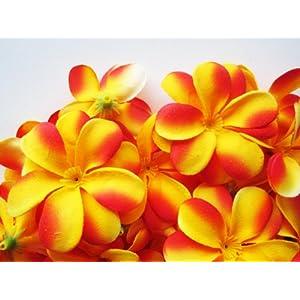 "(24) Yellow Red Hawaiian Plumeria Frangipani Silk Flower Heads - 3"" - Artificial Flowers Head Fabric Floral Supplies Wholesale Lot for Wedding Flowers Accessories Make Bridal Hair Clips Headbands Dress 120"