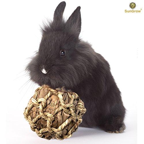 (SunGrow Natural Banana Leaf Ball for Rabbits - Safe, Durable, Environmental-Friendly, Entertaining Chew Toy Improve Dental Health - Keep Bunny, Guinea Pig, Kitten & Chinchilla Healthy &)