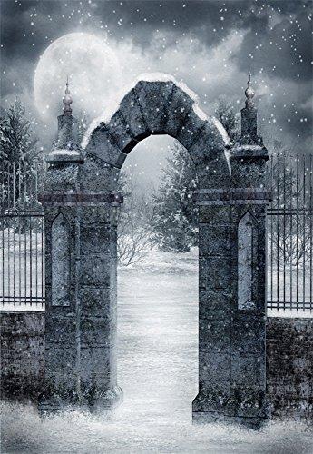 Laeacco Vinyl Backdrop 3x5FT Photography Background Arch Gate Stone Pillar Iron Fence Moon Winter Snowflakes Dreamy Moon Christmas Personal Portraits 1(W) x1.5(H) m Backdrop Video Photo Studio ()