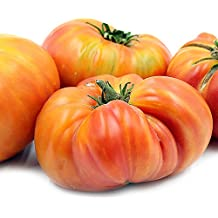 Hillbilly Tomato Seeds (30+ Organic Seeds) - Produces Rare, Beautiful & Delicious 1-2lb Heirloom Fruits - Hillbilly Seeds