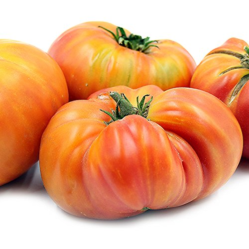 Hot Hillbilly Tomato Seeds (30+ Organic Seeds) - Produces Rare, Beautiful & Delicious 1-2lb Heirloom Fruits - Hillbilly Seeds free shipping