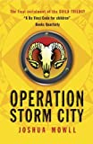 Operation Storm City: The Guild of Specialists Book 3 (Guild Trilogy)