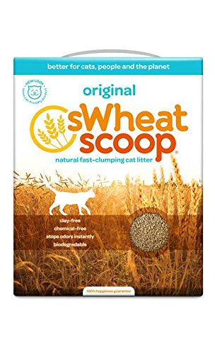 Image of sWheat Scoop Multi-Cat All-Natural Clumping Cat Litter, 12.3lb Box