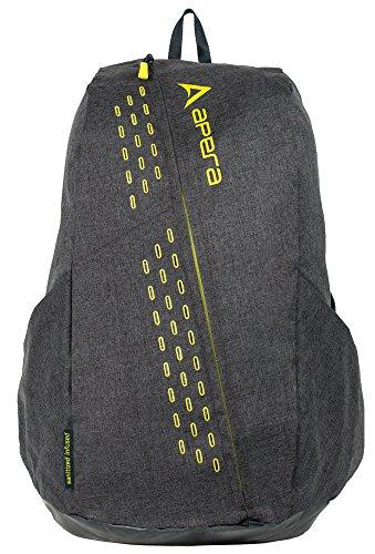 apera-fast-pack-fitness-bag-graphite
