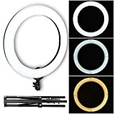 ZoMei 18-inch LED Ring Light Kit with Ball Head and Phone adapter for Camera Smartphone Youtube Video Shooting