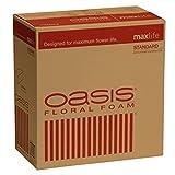 Oasis Standard Floral Foam Bricks - Case of 36 - Maxlife Floral Foam - Wet Floral Foam Bricks for Flower Arranging