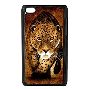 Art Painted Pattern iPod Touch 4 Case Black delicated gift US6938512
