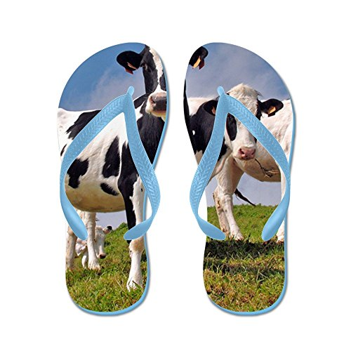 Cafepress Family Portrait - Chanclas, Sandalias Thong Divertidas, Sandalias De Playa Caribbean Blue