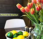 LIFELIKE Fake Lemons and Limes set – 14pcs– Real Looking Fake Fruits for Decoration – Plastic Lemons and Fake Limes for Lifelike Simulations, Kitchen Table Decor, Home Staging, Fake Fruit Bowl