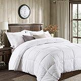 Best Cozy Beddings Goose Down Comforter Kings - Basic Beyond All-Season Goose Down Comforter (King) Review