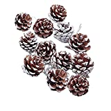 rescozy Snow Tipped Natural Pine Cones for Christmas Decorations, 45 Pcs