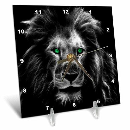 lion pics - 9