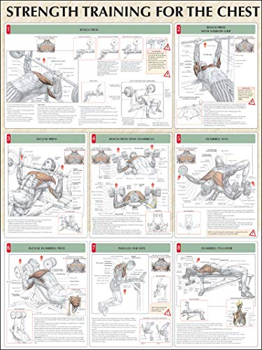 Strength Training Anatomy: Strength Training for the Chest Poster