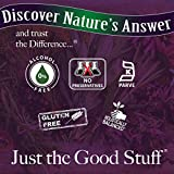 Nature's Answer Goldenseal Root   Herbal Supplement   Supports A Healthy Immune System   Gluten-Free & Alcohol-Free 1oz