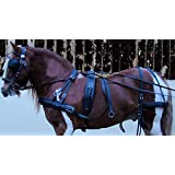 PRORIDER Horse Western Minuature Spotted Leather Driving Show Harness 10601-03