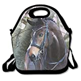 Beautiful Arabian Horse Lunch Bag Lunch Box Handbag 3D Animal Prints For Kids And Adults