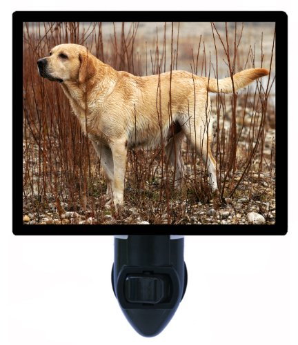 Dog Night Light - Yellow Lab - Labrador Retriever Labrador Retriever Light