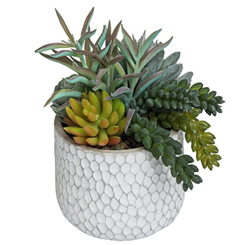 MyGift 8-Inch Artificial Succulent Plant Arrangement in Dimpled Clay Planter (Succulent Faux)