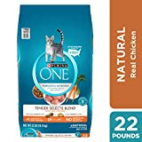 Purina ONE Natural Dry Cat Food, Tender Selects Blend With Real Chicken - 22 lb. Bag