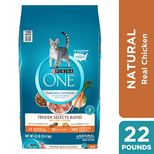Purina ONE Natural Dry Cat Food; Tender