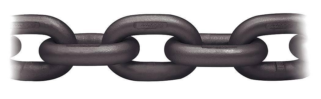CM 607339C10 HERC-Alloy Chain, Grade 100, 3/8'' Size, 10' Length, 8800 lb. Capacity