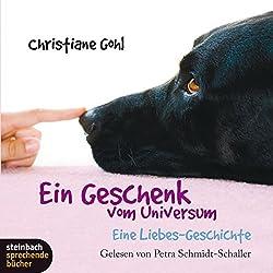 Ein Geschenk vom Universum: Eine Liebes-Geschichte