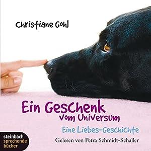 Ein Geschenk vom Universum: Eine Liebes-Geschichte Hörbuch