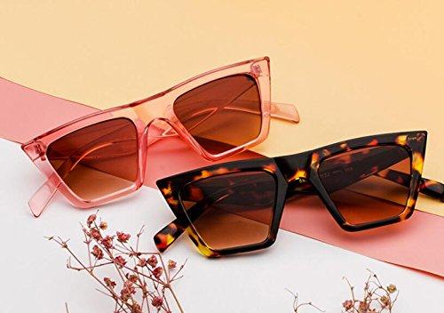 ojo gato sol Gafas de de la Gafas manera coloridas de C3 Shoot MAIDIS grandes de de Street del New personalidad sol la CwFqCfxOP