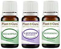 Plant Guru Beginner's Trio Essential Oil Set Kit 100% Pure Therapeutic Grade 10 ml. Set Includes: Eucalyptus, Lavender, Peppermint.
