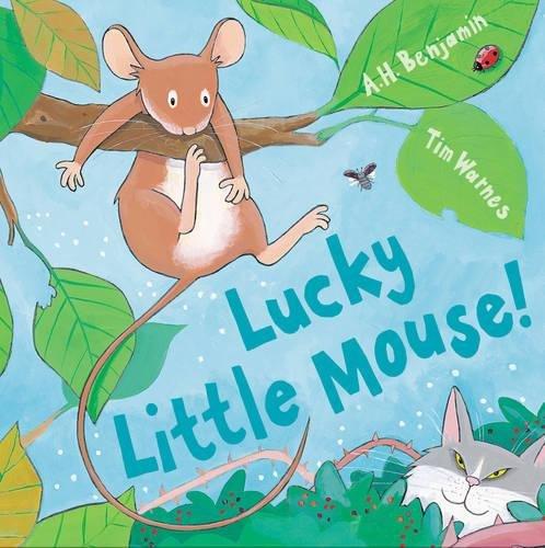 Read Online Lucky Little Mouse (Mini Hardbacks) pdf
