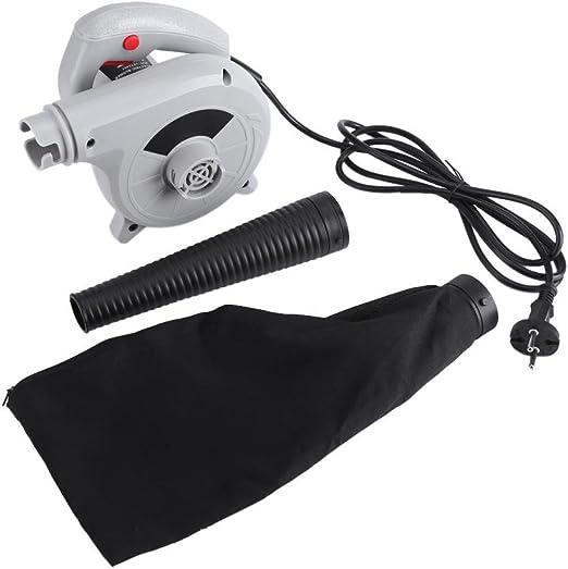 GOTOTOP 500W Eléctrico Soplador de Aire Limpiador Manual para Hoja de Polvo de Computadora Coche: Amazon.es: Jardín