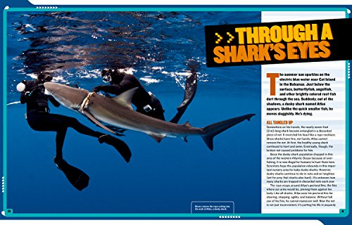 National Geographic Kids Mission: Shark Rescue: All About Sharks and How to Save Them (NG Kids Mission: Animal Rescue) by National Geographic Children's Books (Image #2)