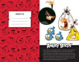 Angry Birds Hardcover Ruled Journal (Insights Journals)