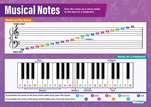 "Musical Notes Poster|Educational Wall Poster for All Students, Glossy Paper Measuring 33"" x 23.5"" Easy Learning with Colorful Images for the Classroom or Home, by Daydream Education"