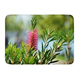 "Emvency Bath Mat Batumi Green Anthers Callistemon Citrinus Crimson Bottlebrush in Natural Habitat Red Attractive Bloom Bathroom Decor Rug 16"" x 24"""