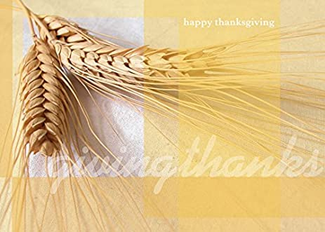 Amazon thanksgiving greeting cards th7003 business greeting thanksgiving greeting cards th7003 business greeting card featuring wheat and a thanksgiving message m4hsunfo