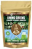 LIVING GREENS: Digestive Probiotic. 10 Veggies, 4 Grasses. Fermented. Great taste- just add water! Nutrient-Dense Organic Green Drink Mix. Non-GMO, Sugar Free & Gluten Free Superfoods Powder.