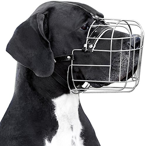 BronzeDog Metal Wire Basket Dog Muzzle Great Dane Mastiff Leather Adjustable Muzzles for Large Dogs (XL)